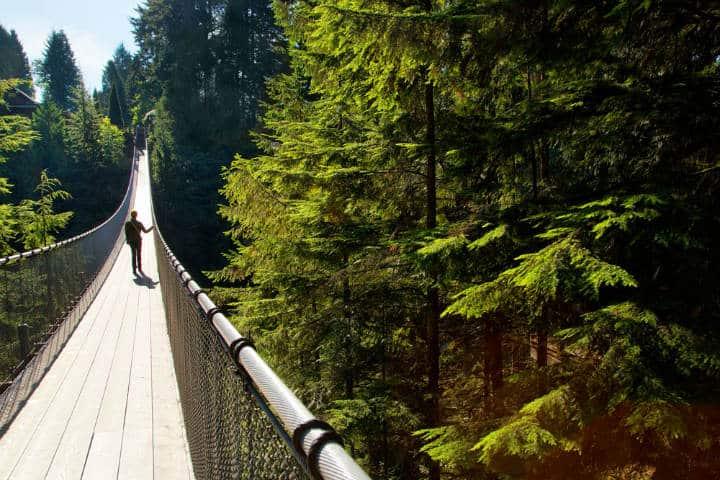 Puente-Capilano-bridge-Foto-CapBridge