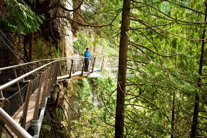 Puente-Capilano-cliffwalk-Foto-CapBridge