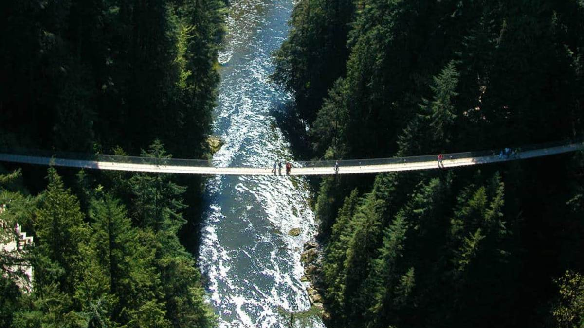 portada-Puente-Capilano-bridge-Foto-CapBridge-2