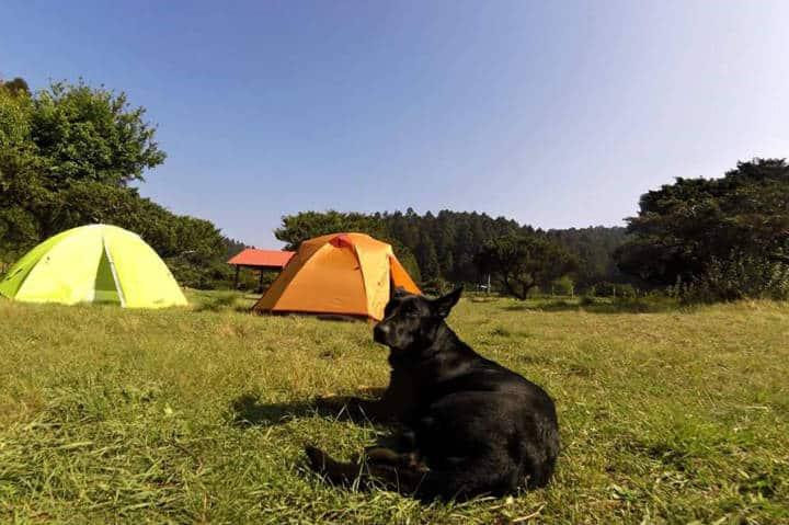 Campamento cerca CDMX Foto Parque Nacional El Chico Freya