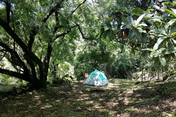 Campamento cerca CDMX Tepoztlan Foto Aribnb 4