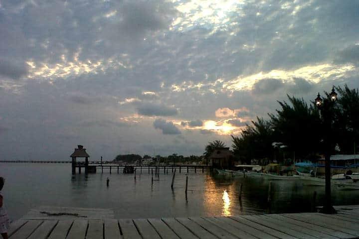 Delfines Isla Aguada Campeche Foto Don Pasita 13