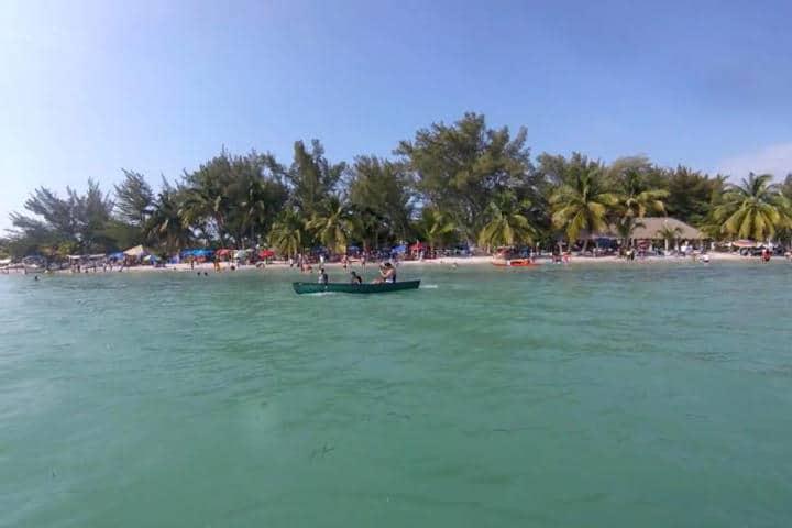 Delfines Isla Aguada Campeche Foto Isla Aguada S de D