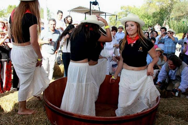Fiestas de la Vendimia en Guanajuato Foto Cuna de Tierra 3