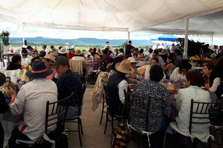 Vendimia Guanajuato Foto Viñedo el Lobo 8