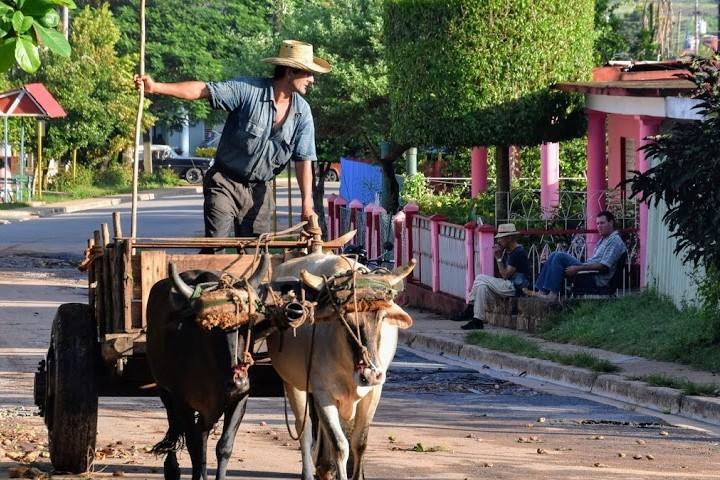 Recorrido de los viñales de Cuba. Foto Mochileando por el mundo