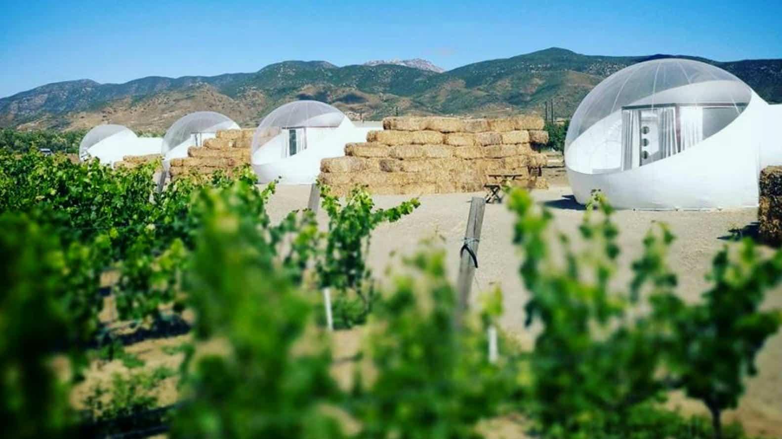 Hoteles Valle de Guadalupe Foto Campera Hotel Burbuja 13