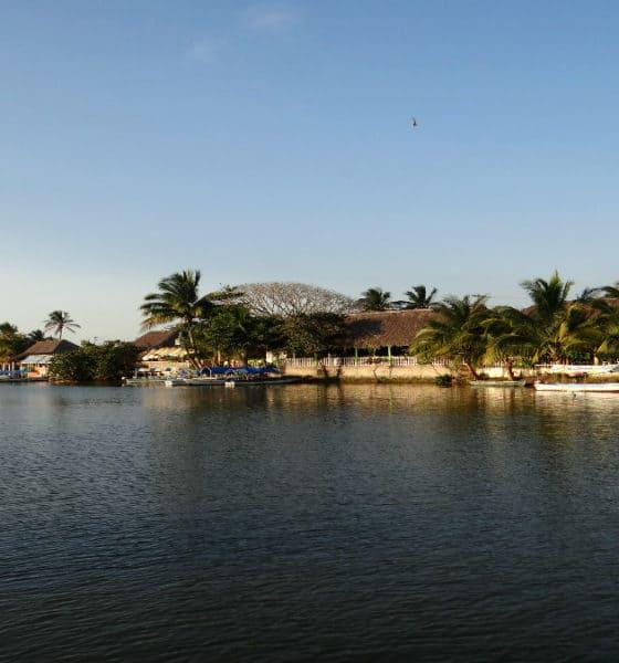 Portada. Laguna de Mandinga en Veracruz. Foto. Identidad Veracruz
