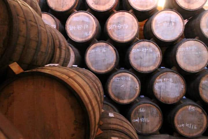 Cómo llegar a Tequila. Foto: Tequila Jalisco PM