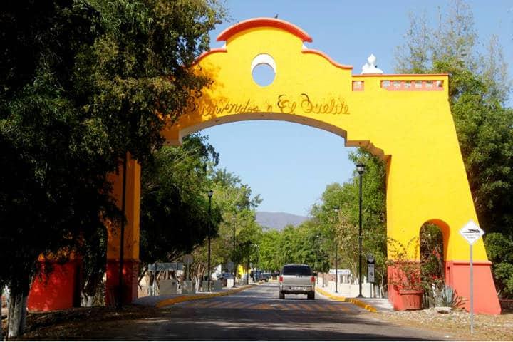 Sinaloa Quelite Foto Sectur Sinaloa