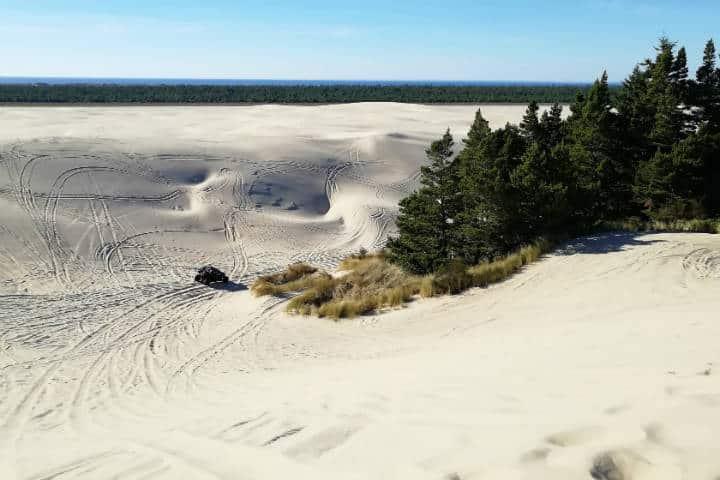 Dunas de arena en Oregón 20