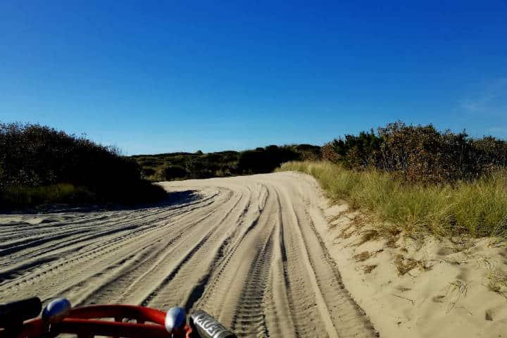 Dunas de arena en Oregón 33