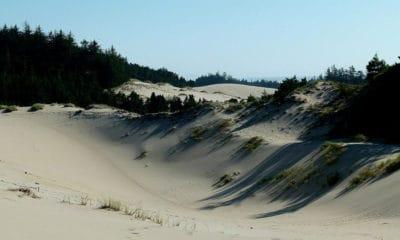 Portada.Dunas de arena en Oregon.Foto.Art Tower