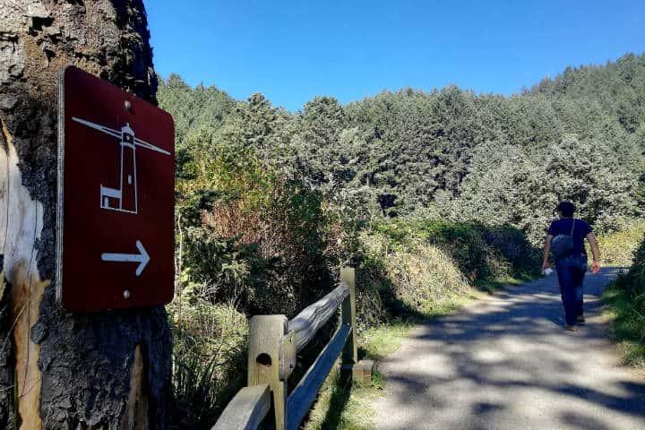 Ruta Faros de Oregón Foto El Souvenir 31
