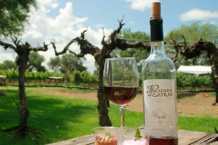 Vino de Hacienda de Letras. Foto: Hacienda de Letras