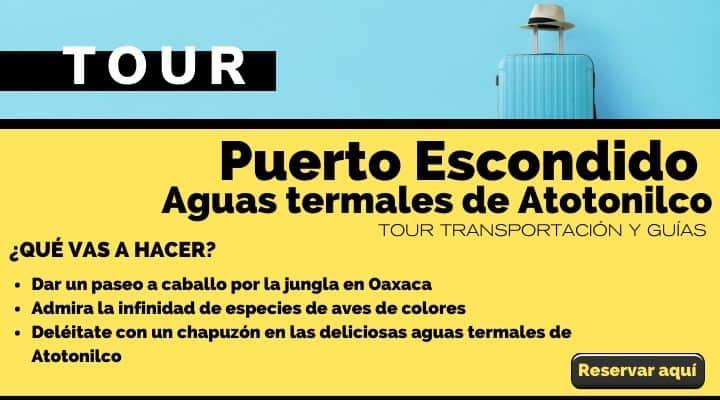 Tour Puerto Escondido, paseo a caballo y a las aguas termales de Atotonilco. Arte El Souvenir