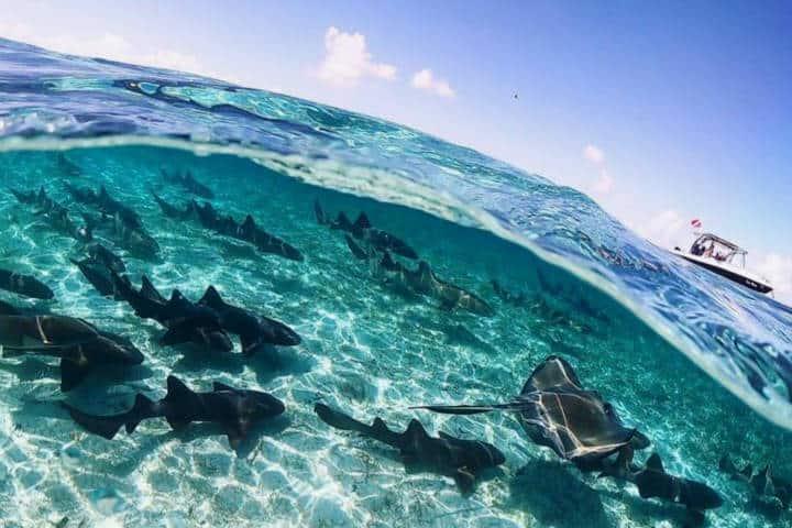 Razones para visitar Belize Foto Belize Vacation 1