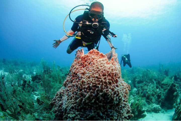Razones para visitar Belize Foto Belize Vacation 5