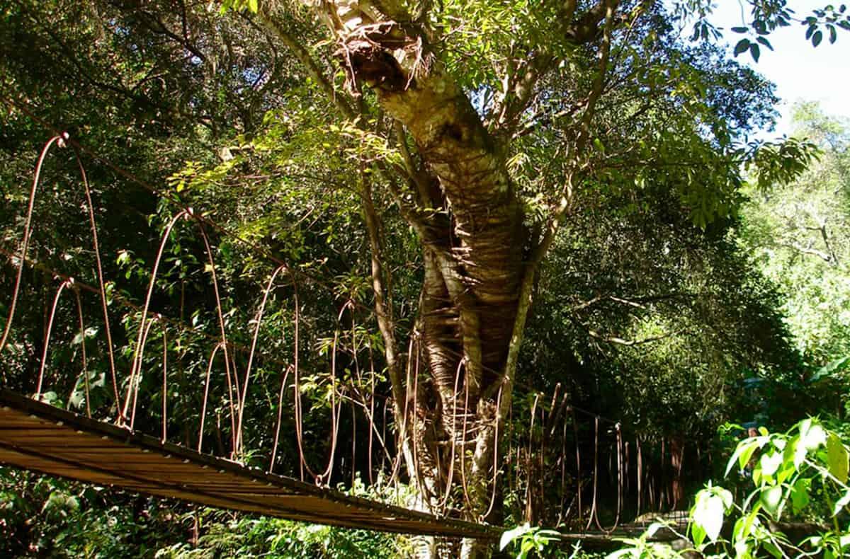 Suchitlán Colima. Foto: comalapueblomagico
