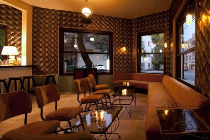 donde comer el 14 de febrero felina bar