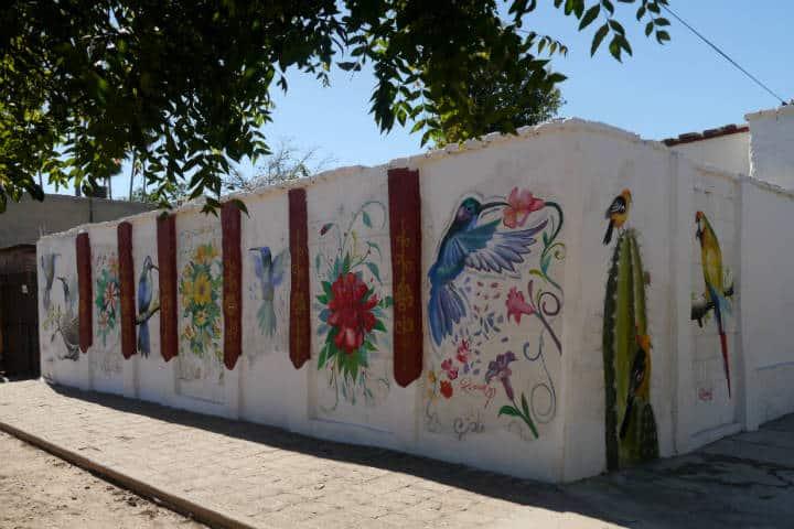 Cocorit Pueblo de las Aves Foto El Souvenir 128