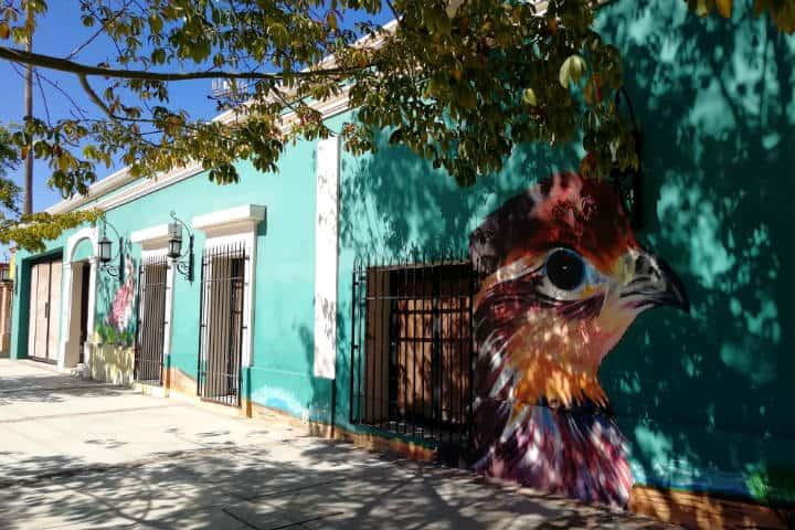 Cocorit Pueblo de las Aves Foto El Souvenir 51