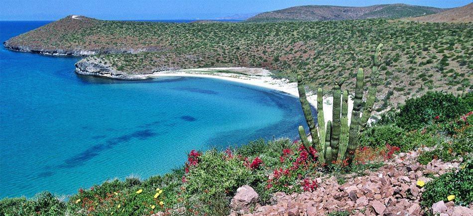 San Felipe Baja California. Foto: Viajando Todo Mexico