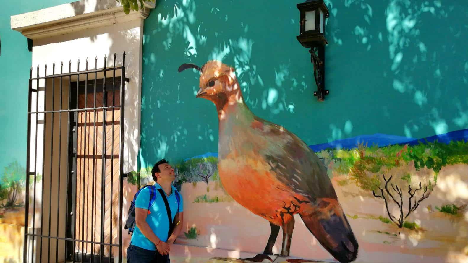Cocorit Pueblo de las Aves Foto El Souvenir 3