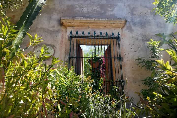 Álamos Pueblo Mágico Foto El Souvenir 18