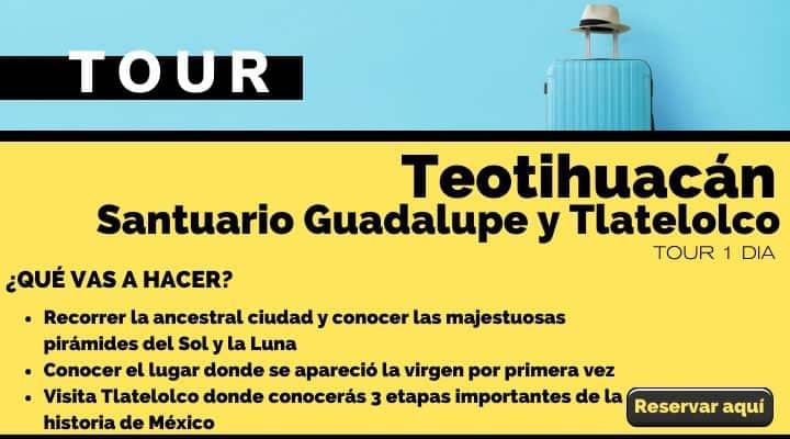 Tour  dia Teotihuacán, santuario de Guadalupe y Tlatelolco