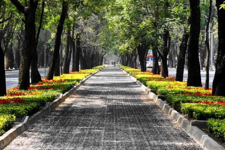 Avenidas de la CDMX con atractivos. Foto Enrique Amaya
