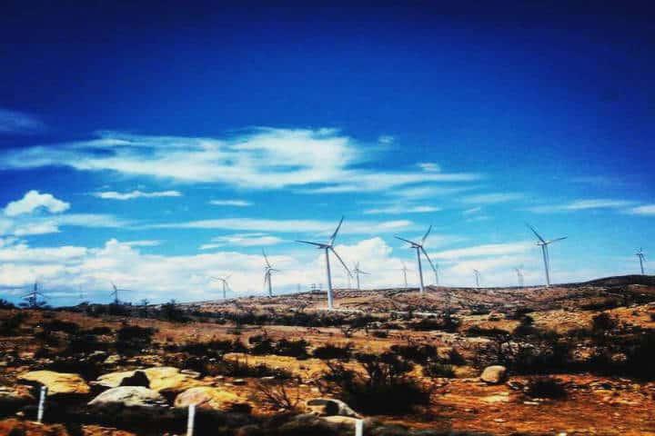 Parque eólico Energía Sierra Juárez. Foto: Tecate Pueblo Mágico