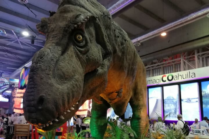 dinosaurio coahuila