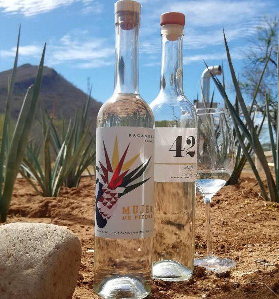 El Bacanora Sonora Foto El Souvenir 14