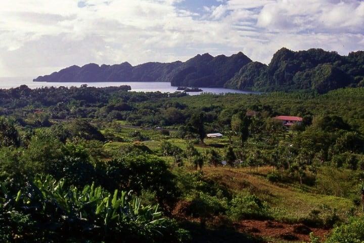 Una zona que se debe disfrutar y conocer al visitar Palaos Foto: Ocean Island Travel