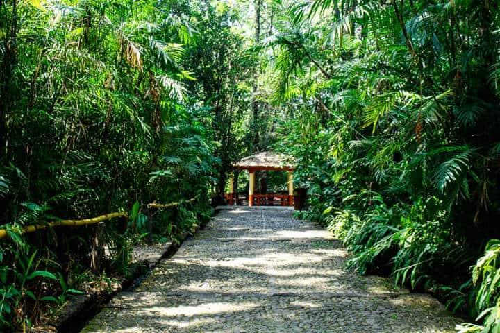 Barranca de Culpatitzio Foto Parque Nacina Nacional BC 7