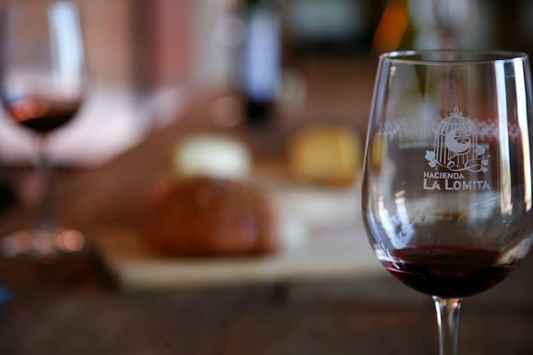 VIÑEDO LA LOMITA EN ENSENADA. Créditos a Vinísfera Revista de Vino