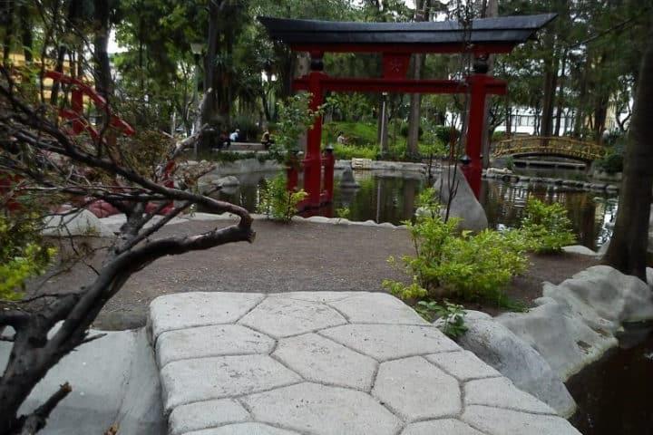 Parque Masayoshi Ohira. CDMX. Foto. Todo Santo Domingo