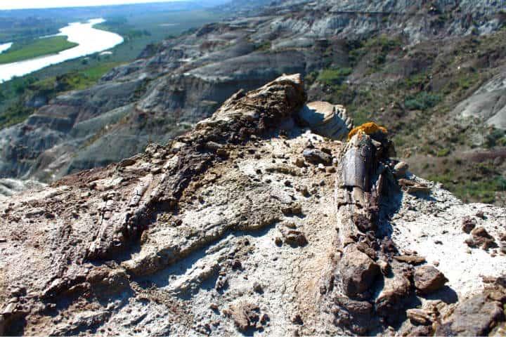 Parque Provincial de los Dinosaurios Foto Canada Keep Exploring 16