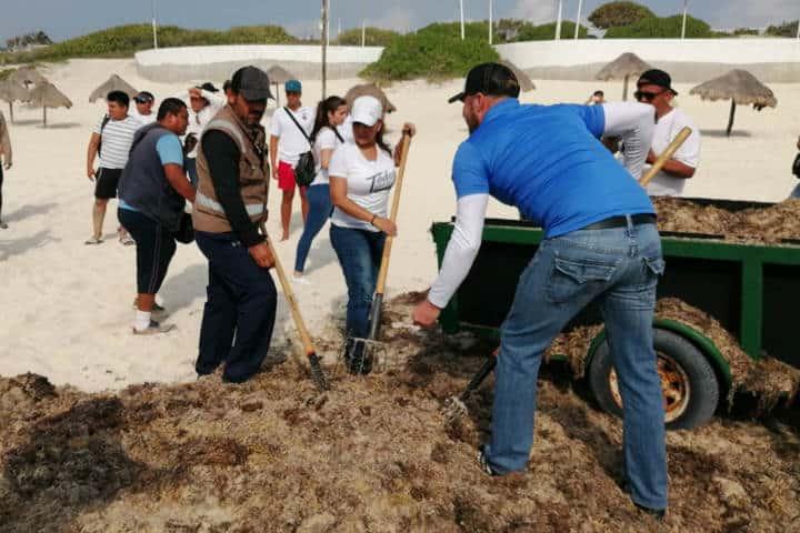 Sargazo Caribe Mexicano Foto Red de Monitoreo CUN 2