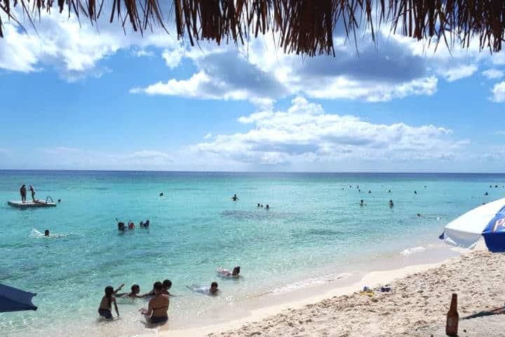 Sargazo Caribe Mexicano Palancar Cozumel Foto Mabi Inglesi
