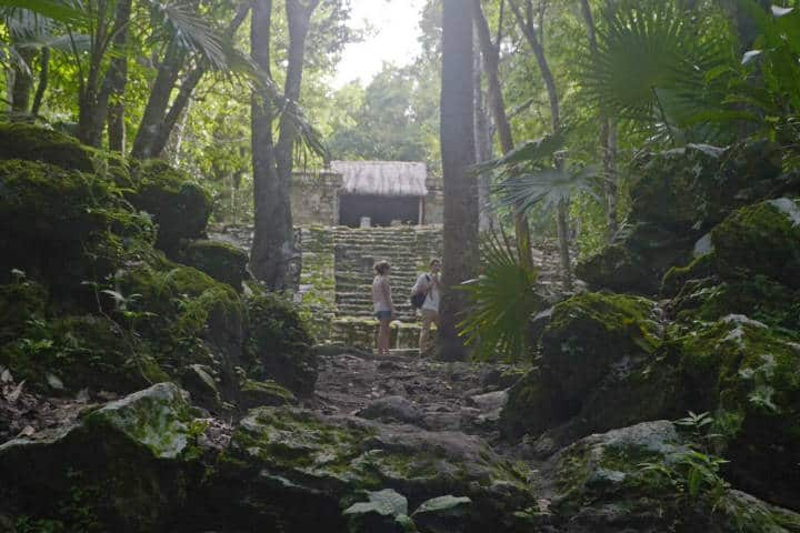 Tren Maya Cámara de Diputados Foto Tulum BikeTours