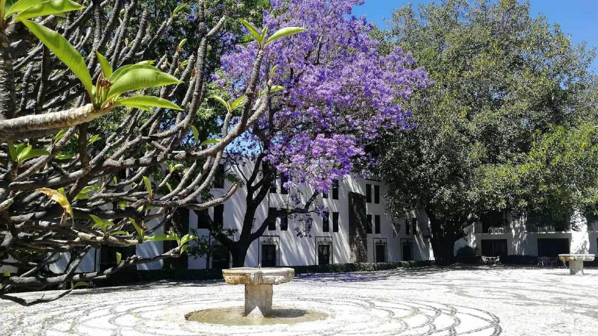 Hacienda Jurica Querétaro. Foto El Souvenir