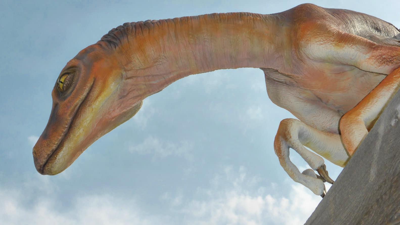 Parque Provincial de los Dinosaurios. Foto DF Hofman