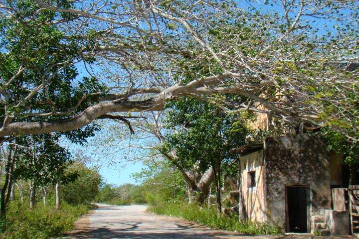 ¿Qué paso en Misnébalam pueblo fantasma_ Foto Lizzet Ortiz.