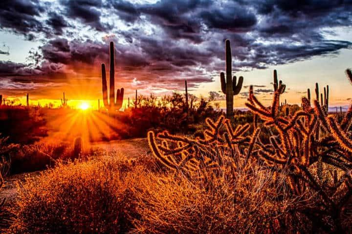 Arizona Foto Travel Update