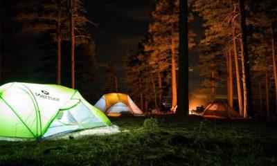 Consejos para acampar en el bosque. Foto Stock Snap.