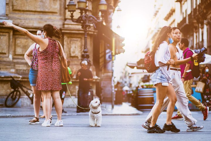 Formas de evitar ser estafado en el extranjero. Foto Sammy Williams.