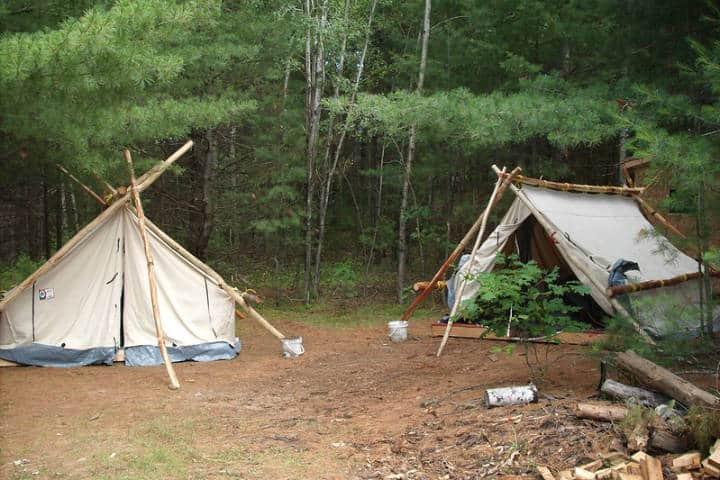 consejos para acampar en el bosque