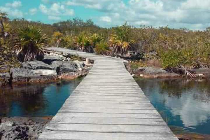 Laguna Yal-Kú en Riviera Maya. Camino. Imagen Cenote y Laguna YALKU Akumal lagoon & snorkel 4
